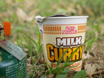 MILK CURRY