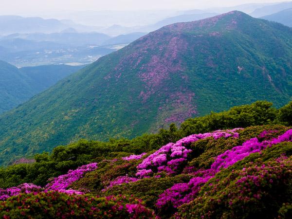 平治岳 from 北大船山