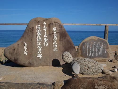 いなか浜のウミガメの石像