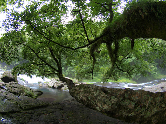 菊池渓谷 JPEG