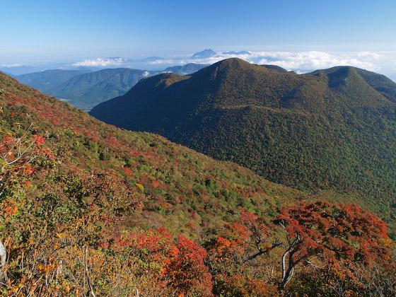 黒岳 from 大船東尾根