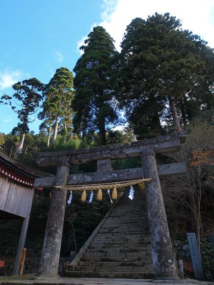 奉幣殿の鳥居