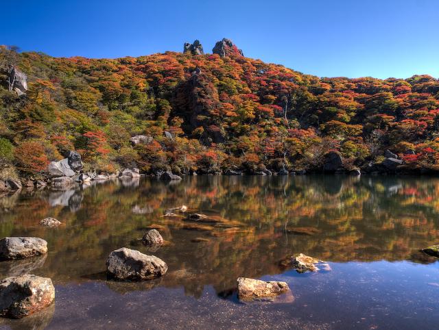 御池の紅葉(午前)
