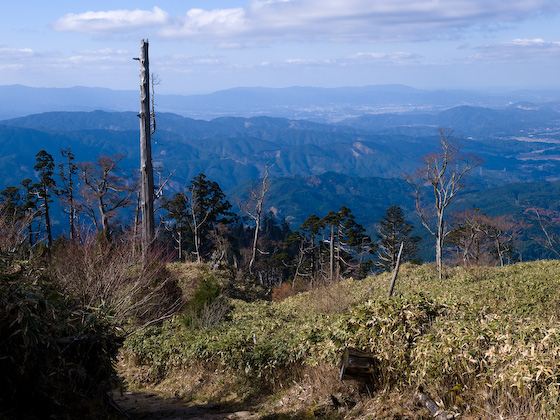 英彦山中腹からの眺め