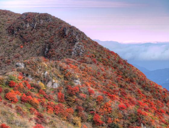 大船山 米塚の縁の紅葉