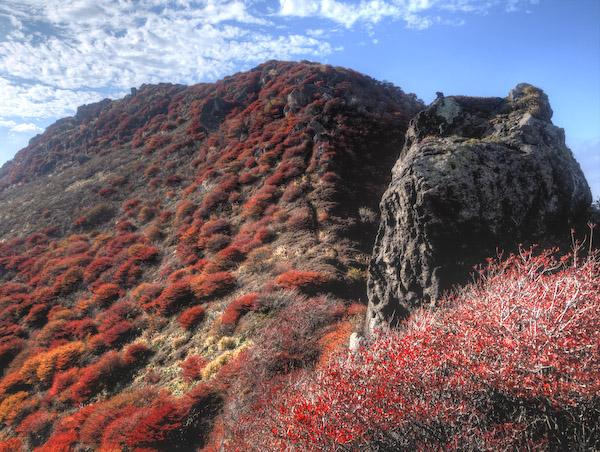 西日で燃え上がる北峰の紅葉