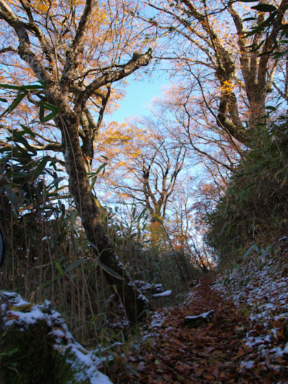 雪の残る登山道