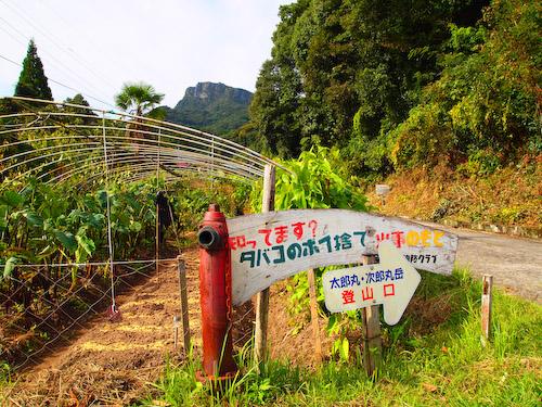 太郎丸・次郎丸岳の登山口