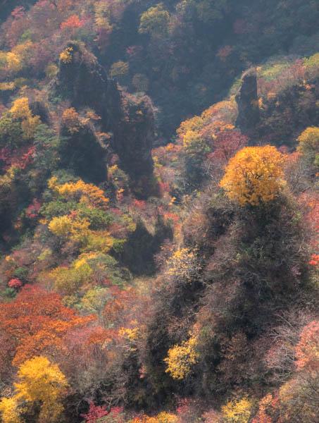 地獄谷の紅葉2