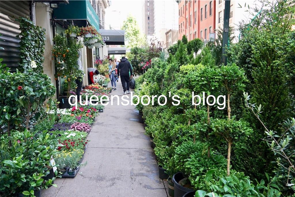 f:id:queensboro:20190527034705j:image