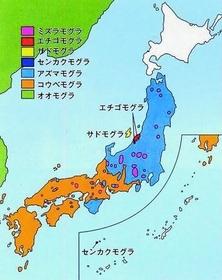 f:id:quizutaikai:20180921233425j:plain