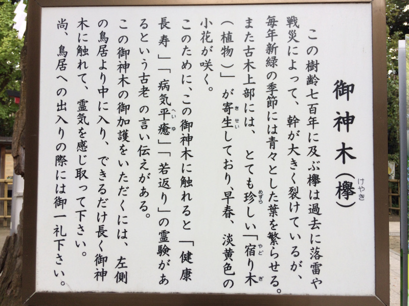 f:id:quo_hitsuji:20181106175012j:plain