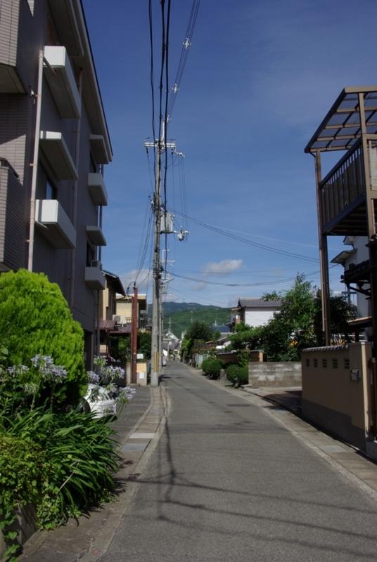 夏への道の画像
