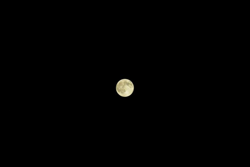 8:52 pm 今秋の満月。の画像