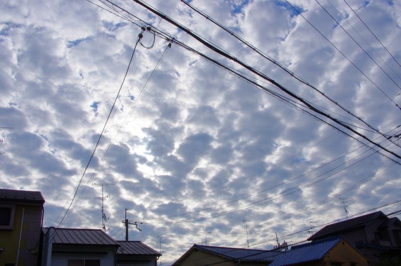 8:02 am  8:08 am  うろこ雲   1:51 pm   11:34 pmの画像
