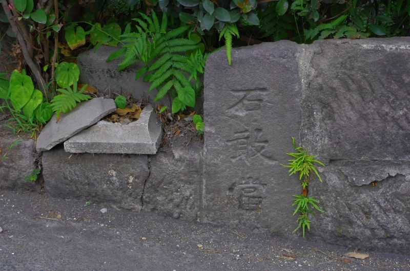 「わざわざ散歩しに行く」In Kagoshima! 6:44 am ~ 6:57 am ~ 7:02 amの画像