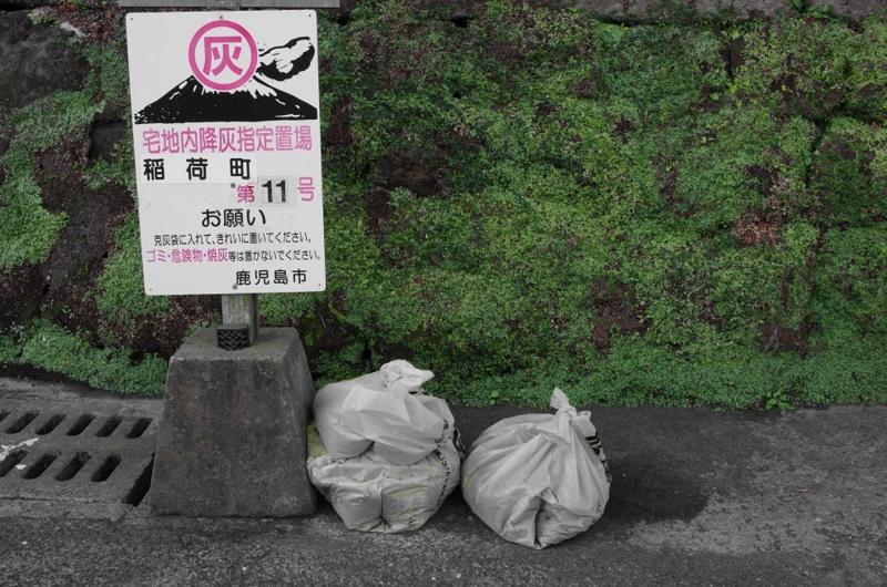 7:49 am ~ 7:51 am わざわざ散歩しに行く in Kagoshima...の画像