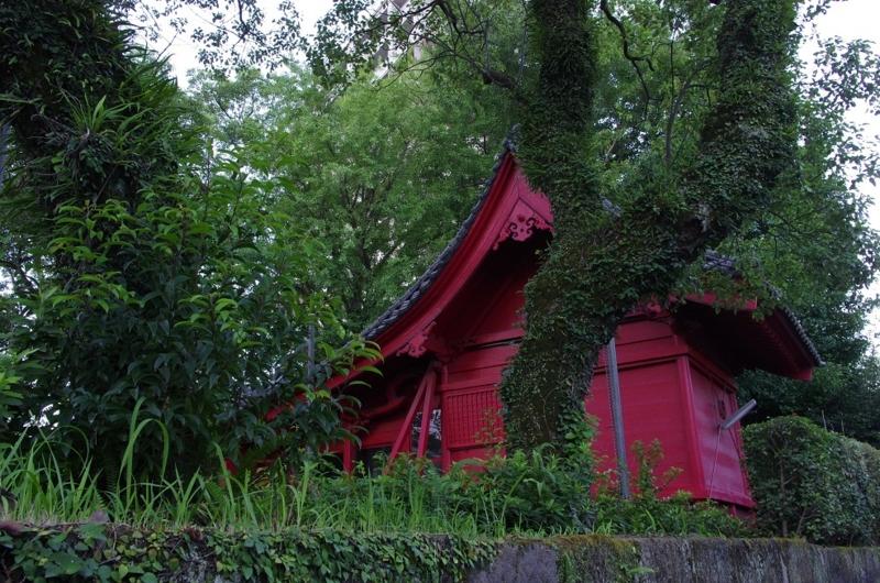 6:02 am ~ 6:21 am わざわざ散歩しに行く in Kagoshima...の画像