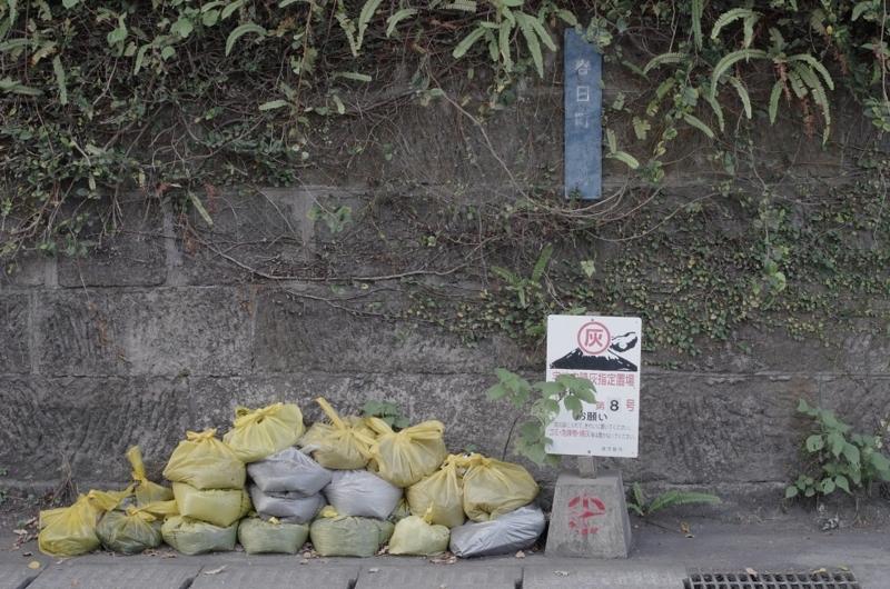 「わざわざ散歩しに行く」In Kagoshima! 7:13 am ~ 7:14 am ~ 7:17 amの画像