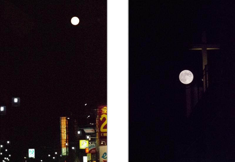 8:53 pm おれは、とっったぞぉぉ〜!の画像
