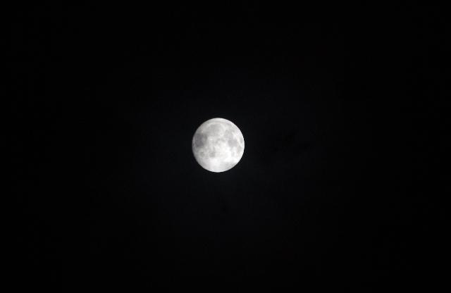 10:15 pm 十五夜(前撮り?・・・違うか)の画像