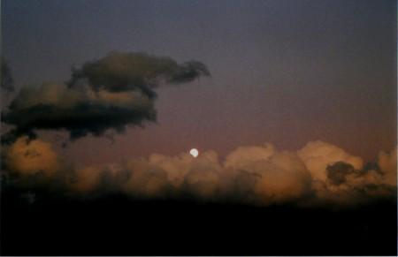 f:id:qyu:20091021122952j:image
