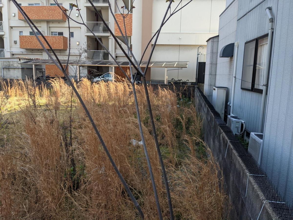 f:id:r-s-nishi-nihon-h:20210329180505j:plain