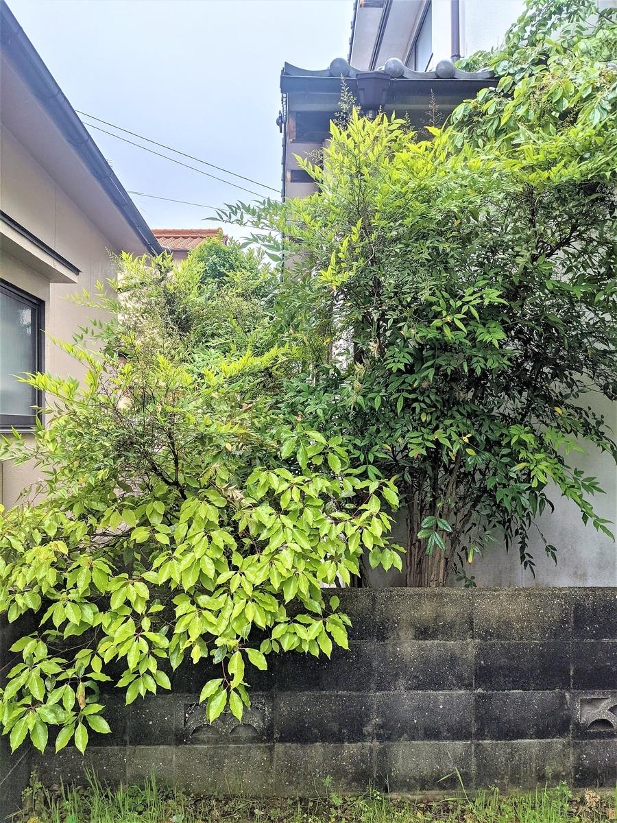 f:id:r-s-nishi-nihon-h:20210519130027j:plain