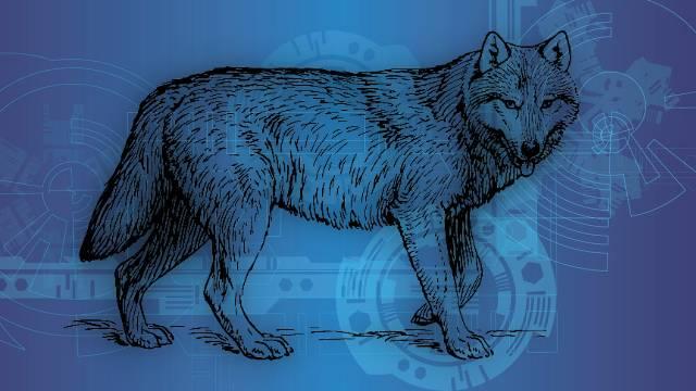 狼のイメージ
