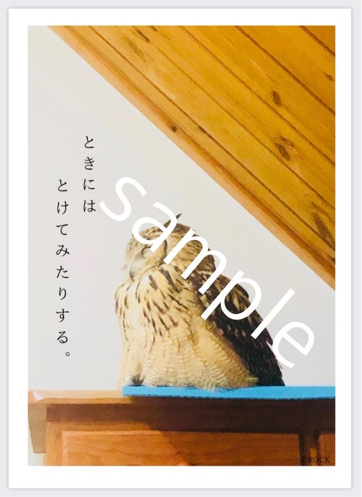 f:id:r0ck-snufkin:20200521195344j:image