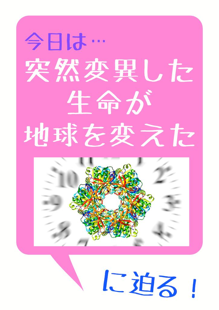 f:id:r0ck-snufkin:20200621100218p:image