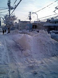 大雪から一夜明けて@札幌