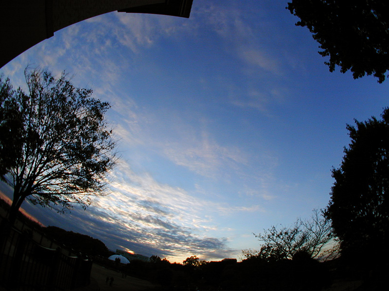 相模原で見る夕焼け
