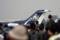 T-400 記念塗装機