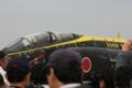 [入間基地航空祭2008]F-4EJ