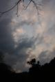 [風景][夕焼け]里山の夕空