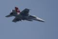 [飛行機]F/A-18F D-BACKS CAG機