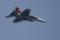 F/A-18F D-BACKS CAG機