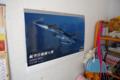 [飛行機]娘の部屋に空自カレンダー