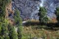 [風景]ハワイ島、溶岩に焼ける道路(のアスファルト)