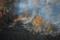ハワイ島、溶岩に焼ける木々