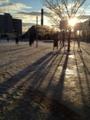 [風景]雪の降った朝