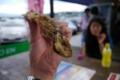 [food][tour]鯵唐揚げ、小田原PA、神奈川県