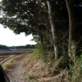 [tour][風景]畑脇の農道を走る(^ ^;)、銚子近く