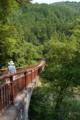 [tour][風景]夏の秋川渓谷
