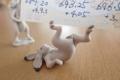 鳥獣戯画 兎 メモスタンド