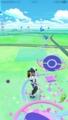 [pokemon]超ちっちゃいコンパン