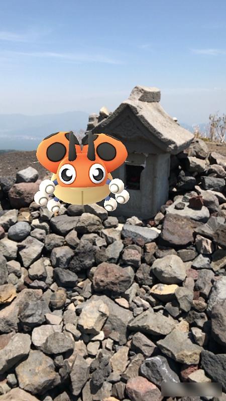 小富士の祠にやせいのレディバが現れた