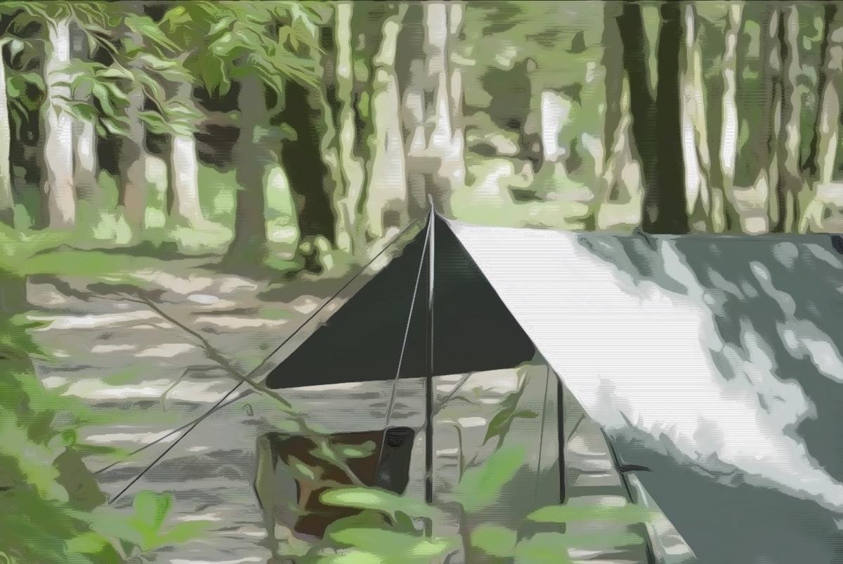 森の中のキャンプ場でタープを張っている