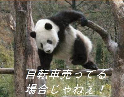 f:id:r9yu25:20160906172744j:plain